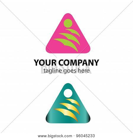 Triangle vector logo icon with bird idea