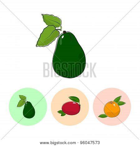 Fruit Icons, Avocado ,mango, Grapefruit