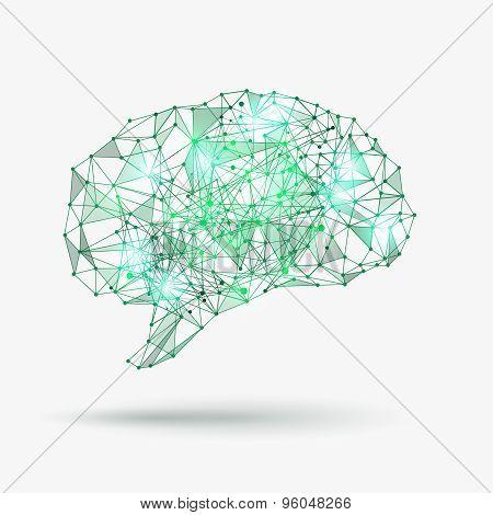 Low poly human brain