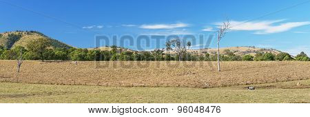 Outback mountain and field in the Scenic Rim, Queensland.