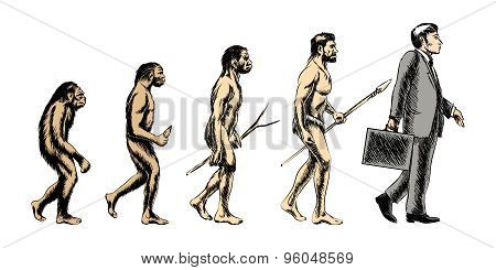 Businessman evolution, vector illustration