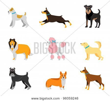 Dogs vector set of icons and illustrations
