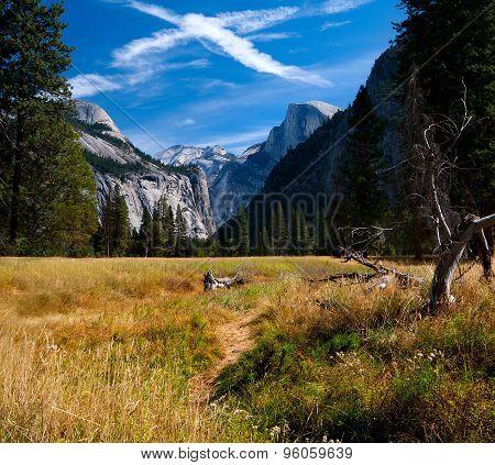 Walking through Yosemite Valley