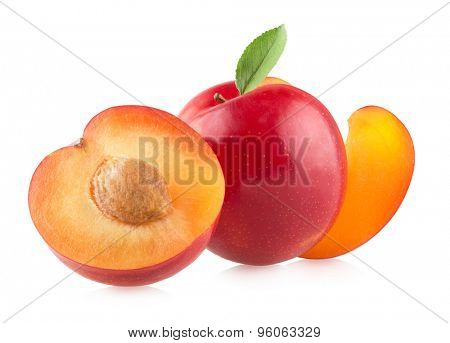 red plums on white background