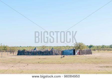 Owambo Farm
