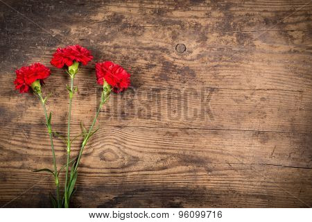 carnations on wooden background