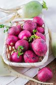 picture of radish  - Radishes natural eco - JPG