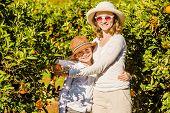 pic of mandarin orange  - Smiling happy mother and son harvesting oranges and mandarins at citrus farm - JPG