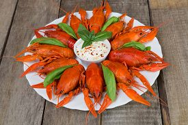 stock photo of boil  - Plate with red boiled crayfish and herbs with white sauce on the side on a wooden table background in rustic style - JPG