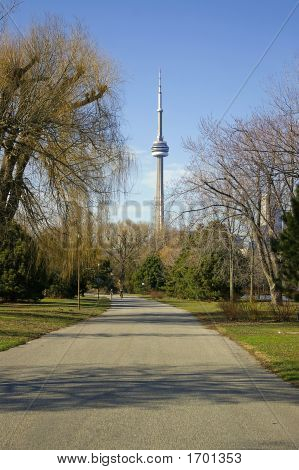 Cn Tower From Park Path