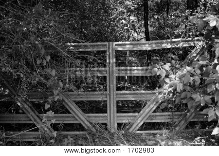 Abandoned Gate
