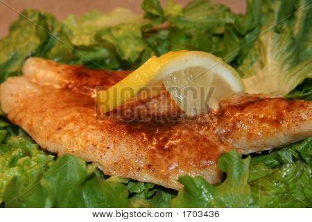 Flounder Parmesan