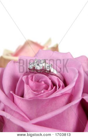 Engagement Ring In Pink Rose Taken Closeup