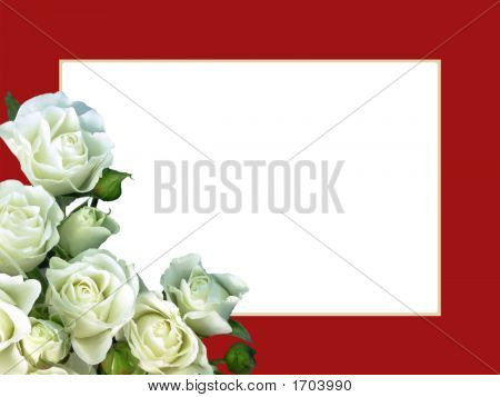 White Roses On Red Frame - Horizontal