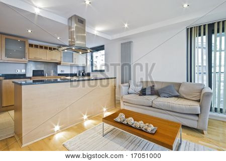 open plan lounge with sofa and coffee table