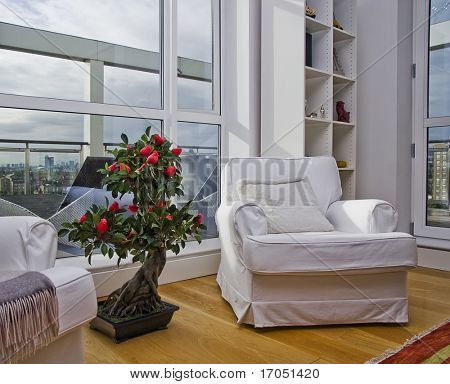 large armchair with a bonsai tree on from of huge floor to ceiling window and city views