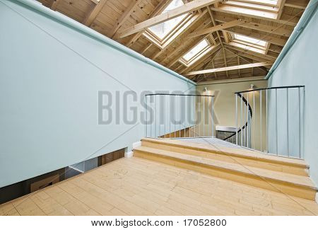 loft room with roof windows and spiral staircase