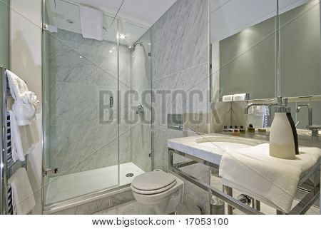 luxury marble bathroom with decoration and accessory