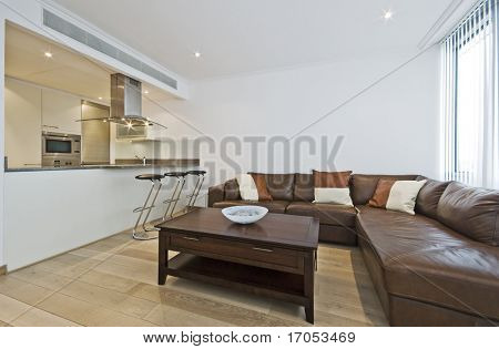 modern luxury open plan living room with breakfast bar