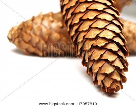 cones on white