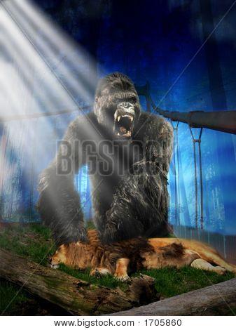 Gorila Vs Lion