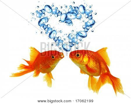 Heart from bubbles with two Gold fishes in love