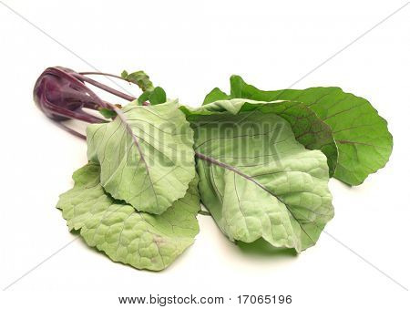 Fresh brassicaceae on white