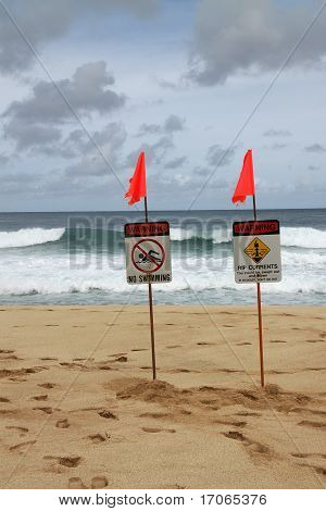 High Surf Warning Signs
