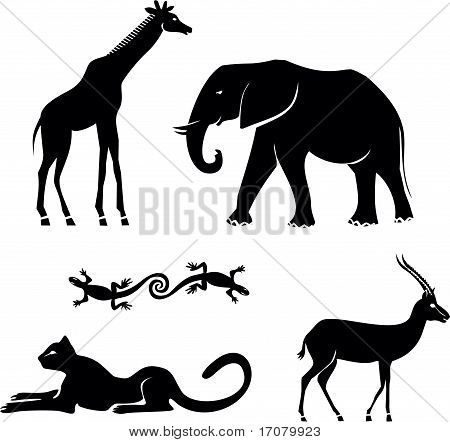 African animals-vector set