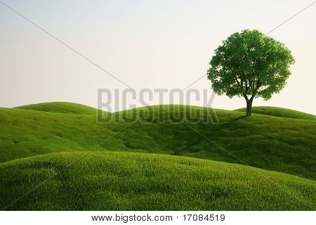 3d rendering of a green field with an elm tree