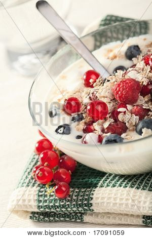 yogurt with cereal and wild berries