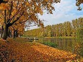 Autumn View At The River In Tarru, Estonia poster