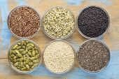 healthy seed collection (chia, hemp hearts, brown flax, pumpkin, black cumin, sesame) - top view of  poster