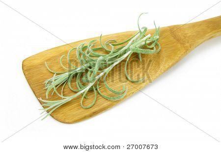 Curry plant Helichrysum italicum