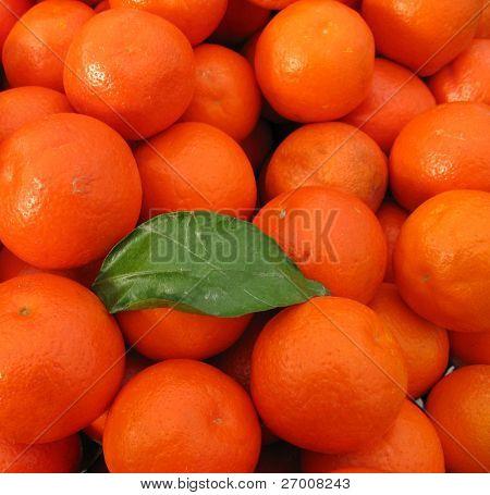 clementines mandarin oranges