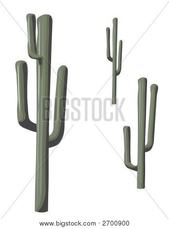 Isolated Saguaro Cactus.Eps