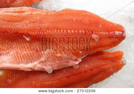 Salmon trout red meat