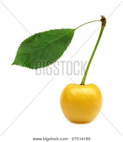 Yellow cherry with green leaf