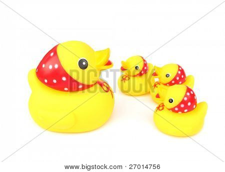 Rubber toy mother duck and three ducklings