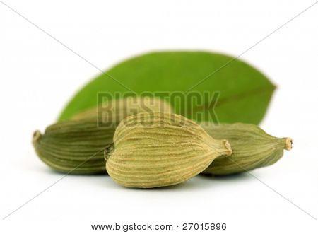 Cardamom or cardamon green elettaria