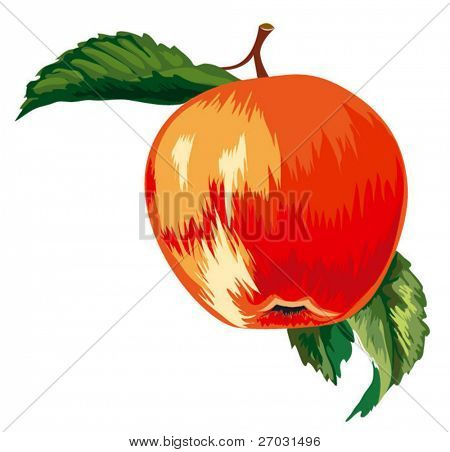 Red Ripe Apple With Leaves, editable vector illustration