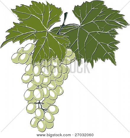 Grapes With Leaves, raster version