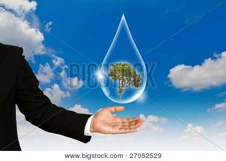 Eco concept : tree in waterdrop  against the sun and the blue sky