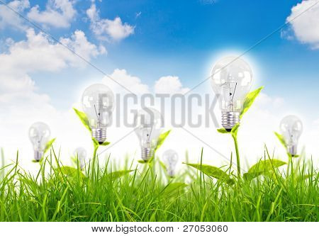 Eco concept -light bulb grow in the grass against blue sky