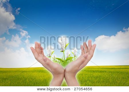 women hand with Light bulb over blue sky and green grass