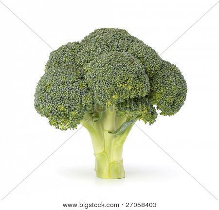 Brokkoli Gemüse isoliert auf weißem Hintergrund