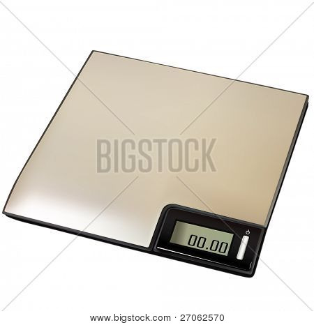 Digital scale eps10