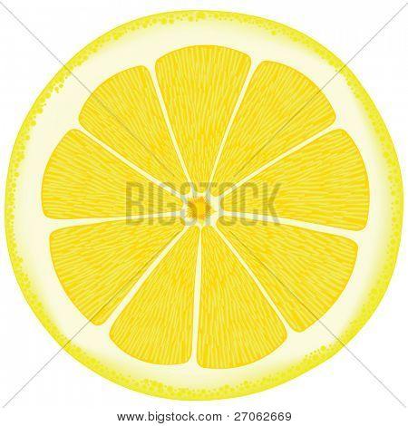 Lemon eps10