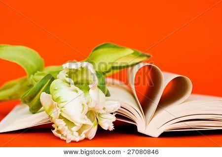 lectura con pasión