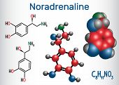 Noradrenaline (na, Norepinephrine , Ne )  Molecule .  It Is A Hormone And Neurotransmitter. Structur poster
